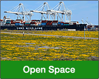 Open Space at Alameda Point