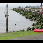 Encinal Boat Ramp