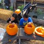 Alameda Point Collaborative Harvest Festival