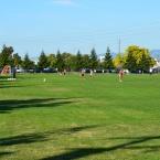 Main Street Soccer Fields