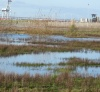 Seasonal wetlands - Northwest Territories